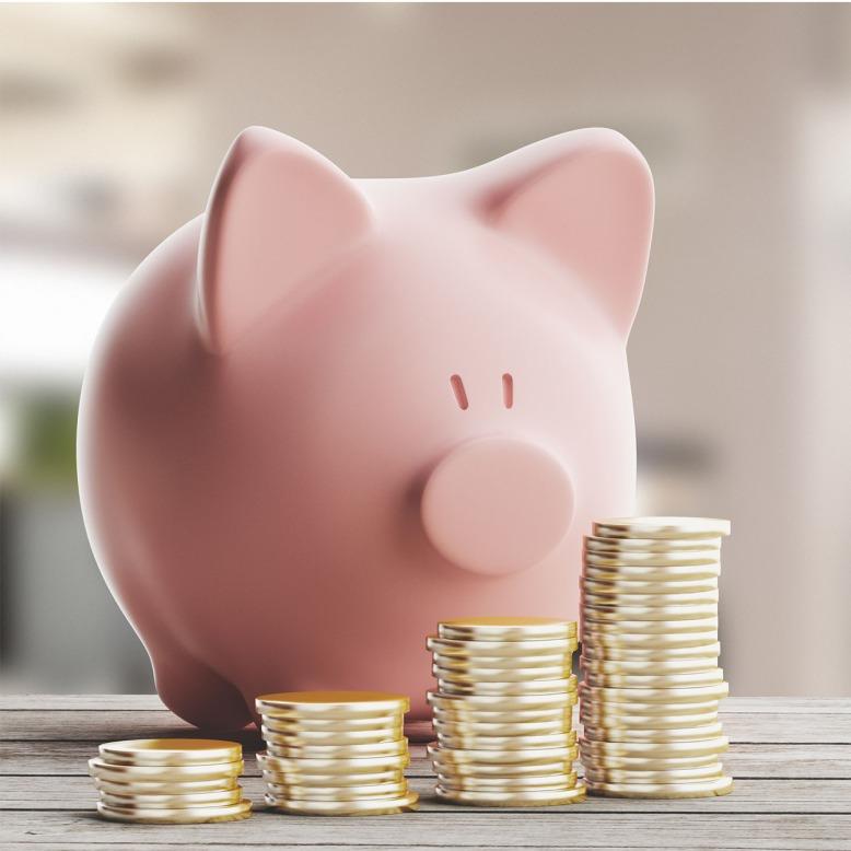 piggy bank2